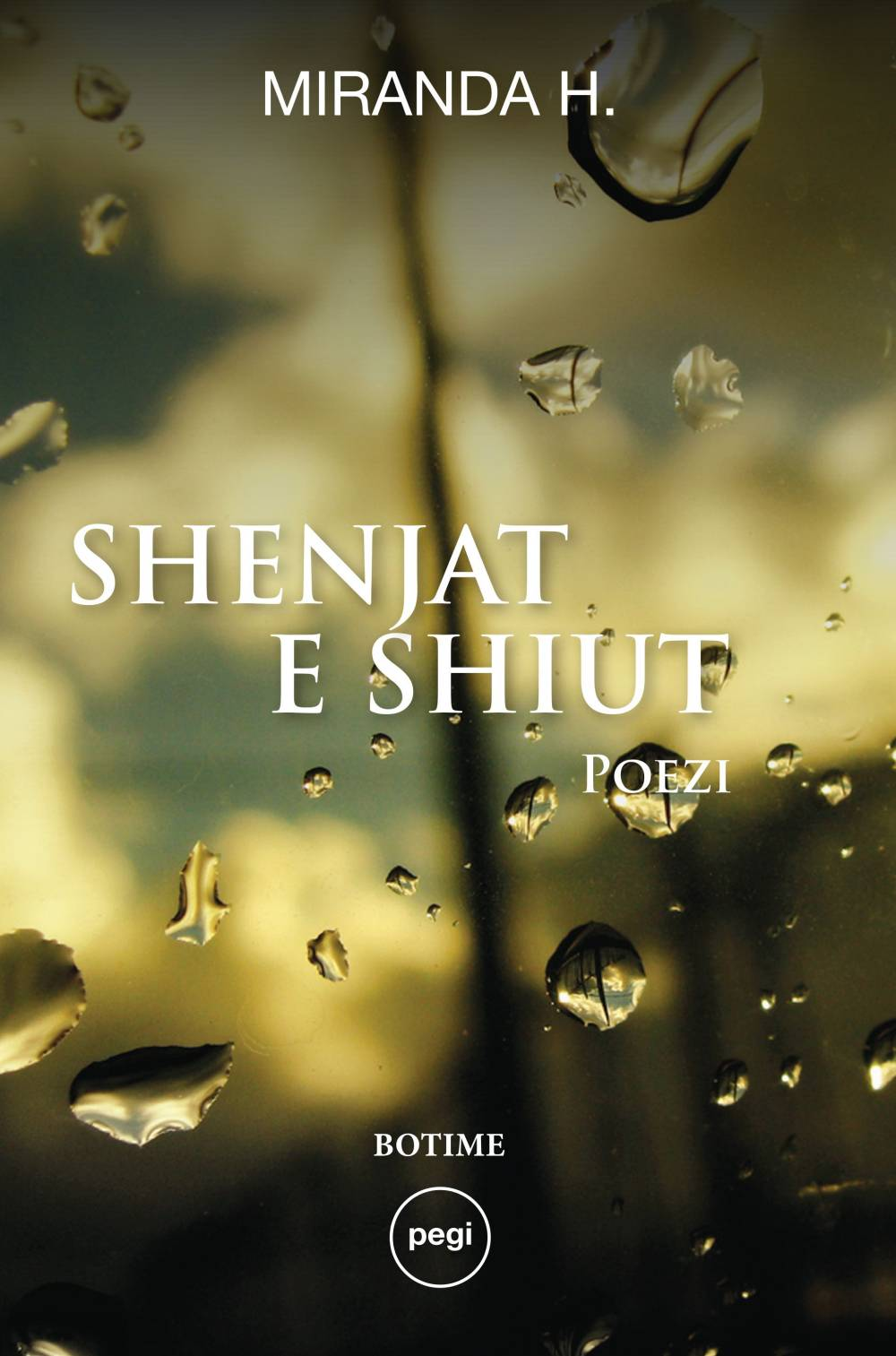 images/book-images/shenjat-e-shiut.jpg